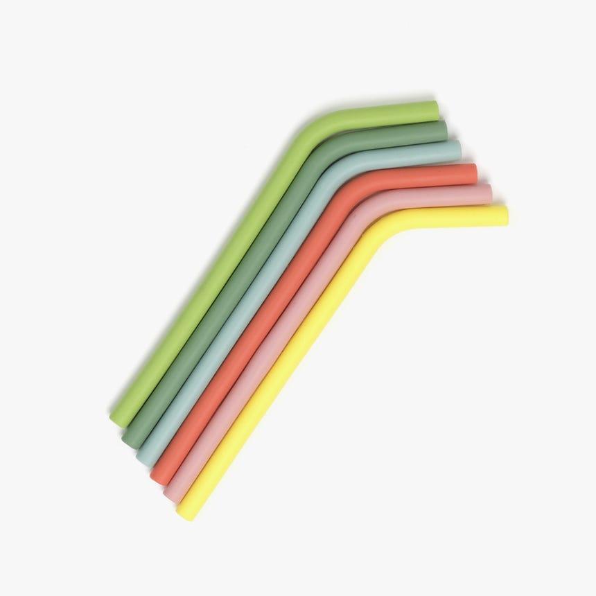 6 Palhinhas Silicone + Escovilhão