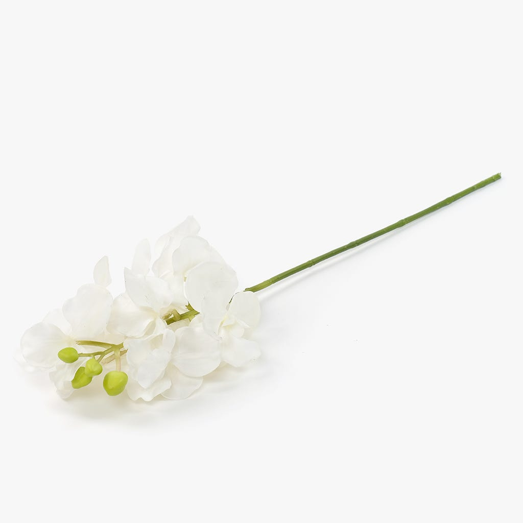 Ramo de Orquídeas Branca 76 cm