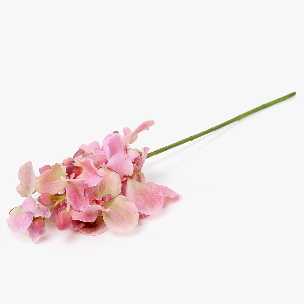 Ramo de Orquídeas Rosa 76 cm