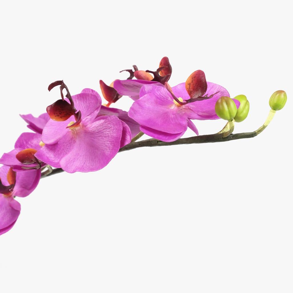 Vaso Orquídea Lilás 80x40 cm