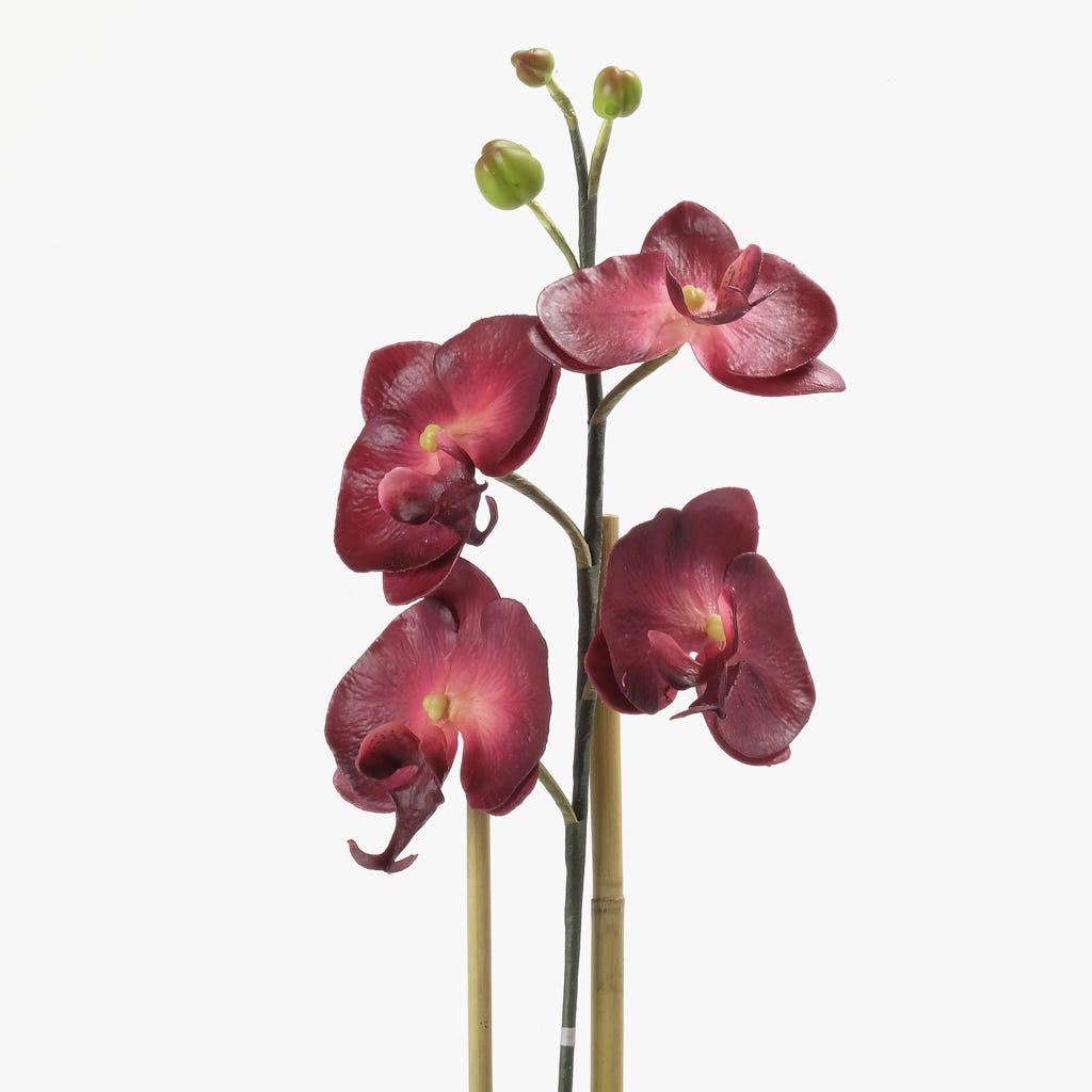 Orquídea Bordô 66x25 cm