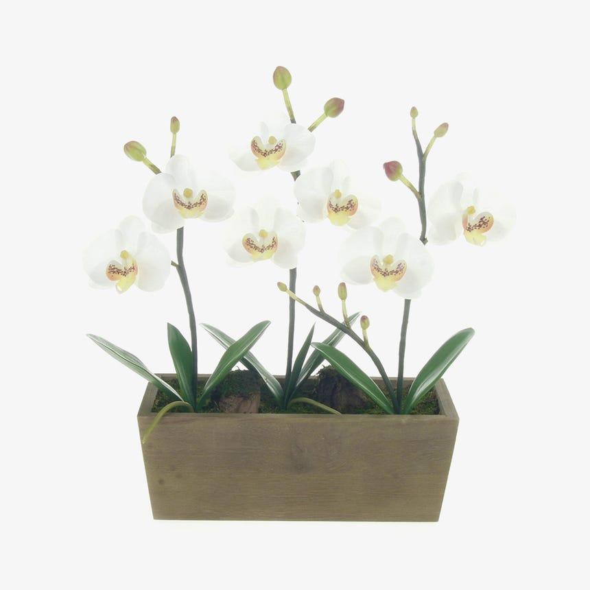Vaso Orquídea Branca 30 cm