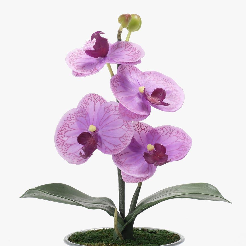 Orquídea Lilás 33x20 cm