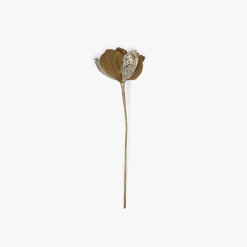 Magnolia Dourado 46 cm